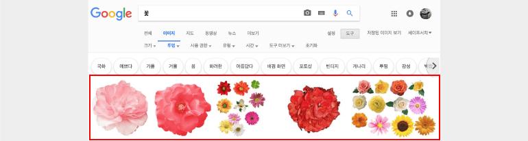 꽃과 관련해서 투명 이미지 검색 결과