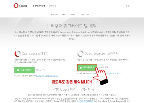 https://www.opera.com/ko/computer/beta 사이트에 접속 후, 'Opera developer 브라우저'를 다운받기