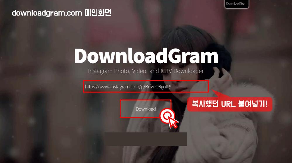 """5)다운로드그램(https://downloadgram.com/) 에 접속한 뒤, 복사했던 URL을 붙여넣기 하고 """"Download"""" 버튼을 클릭해주세요."""