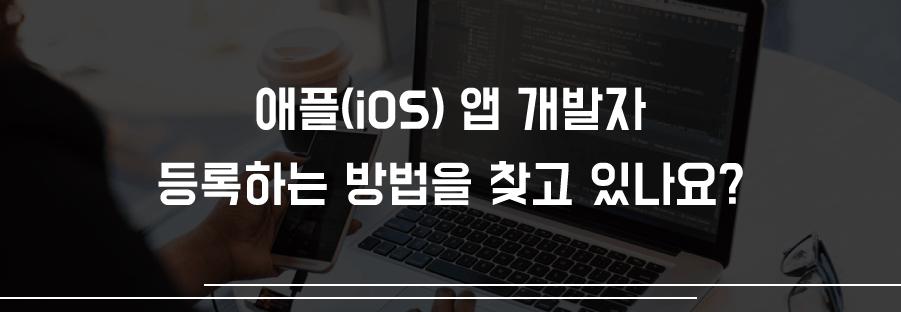 애플 개발자 등록