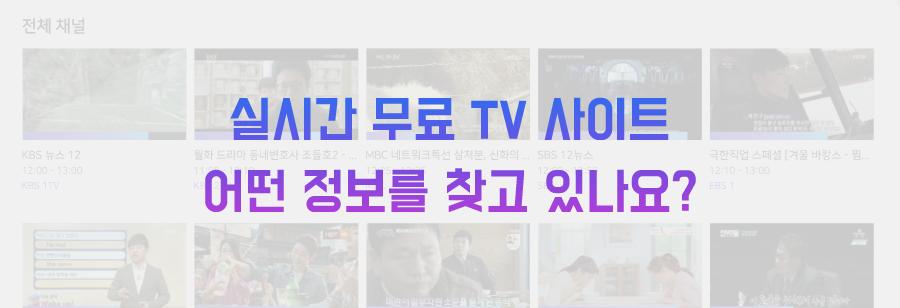 실시간 무료 TV 사이트